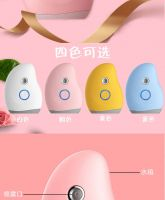 Hot Sale Handy Nano Water Facial Spray Ionic Facial Steamer with Mirror and Power Bank