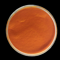 Beta Carotene powder 1% - provitamine A food colorant