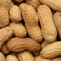 In-Shell Peanuts