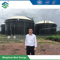 Integrated Double Membrane Gas Tank / Holder for Biogas Engineering