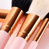 Makeup Brushes 30PCS Pink