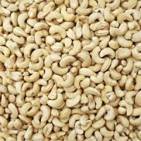 Wholesale for premium quality w240 w320 cashew nuts/cashew kernels