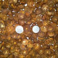 Betel Nuts/Areca Nuts Sliced Coins