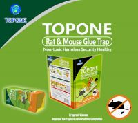 Green Environmental Protection And Powerful Paper Board Mouse Glue Trap For Food Factory