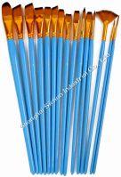 15PCS Professional Brushes set