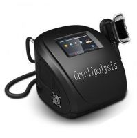 Portable Criolipolyse Fat Freezing weight loss machine CRYO6S