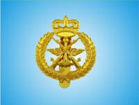 Bright Golden Alloyed Metal Royal Police Badge