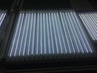 4FEET LED T8 COLOR TUBE