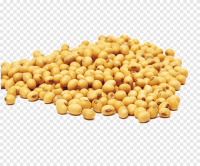 High Quality SOY