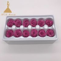 Leading Preserved Flowers Supplier and Manufacturer NTN Rosa