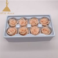 Yunnan Supplier Forever Lasting Rose for Fashion Accesories