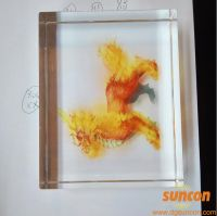 Wholesale Customized Countertop Acrylic Display Tabletop Display