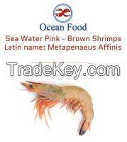Wild Sea caught White and Pink-Brown Shrimps