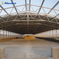 Tight and Light Steel Poultry Shed