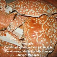 Crab Shell, Crab Shell Powder