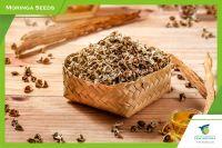 Timor Moringa Seeds