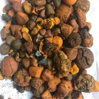 Grade AA Ox Gallstones | Cattle Gallstones | Cow Gallstones For Sale