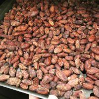 High Grade Sun Dried Cocoa Beans