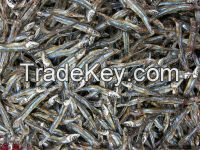 Dried black anchovy