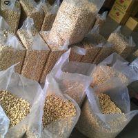 High Quality Raw Cashew Nuts Wholesale / Raw Cashew Nuts in Shell / Raw Cashew Nut for Sale