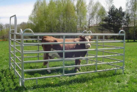 High Quality Hot Dipped Galvanized Livestock Metal Fence Panels