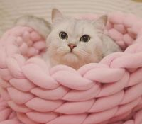New Soft and Luxurious Cat Basket Style Bed