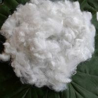 15D hollow non-silicon polyester staple fiber A Grade