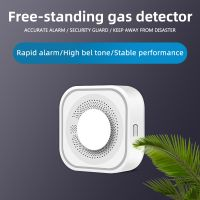 Wholesales gas detector for home use with factory price OEM ODM support