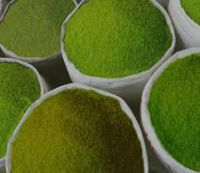 #Free Shipping ->> Pure Red Kratom Powder
