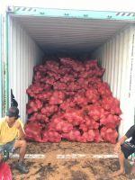 Semi-Husked Coconut