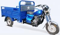 150CC motorized cargo tricycle/Three wheel motorized cargo rickshaw/hot sale in Africa