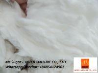 100% Cotton Comber Noil -  +84854174907