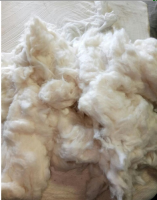 High Quality 100% Absorbent Bleached & Unbleached Cotton Comber Noil/Cotton Waste With Best Price From Vietnam Manufacturer