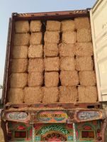 Wheat Straw (High grade from Pakistan)
