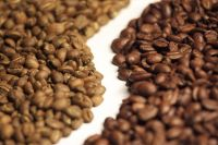 OEM - Arabica and Robusta blending - freeze dried instant coffee