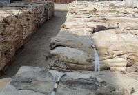 Dry salted Donkey Hides and Cow Hides, cattle Hides, animal skin, Goats, Horses