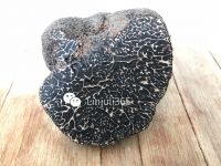 black winter truffles, summer truffles, fresh truffles, tuber melanosporum,