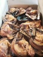 Smoke Dry fish Best price