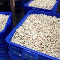 Wholesale Bulk Raw Cashew Nuts /Cashew Kernels Suppliers
