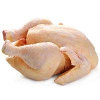 Quality Halal Frozen Chicken ,halal brazil chicken,halal chicken frozen chicken feet for sale