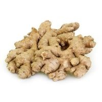 Organic fresh ginger peru/air dry ginger for sale