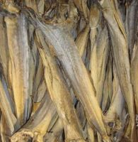 Skinless/skin on frozen ocean sea alaska pollock fish fillets