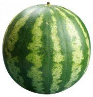 100% Fresh Ripe water melon ( Seedless )