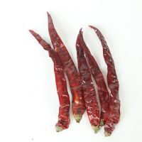 Dried Hot Red Chili Pepper