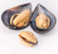 Certified seafood shellfish frozen half shell mussel