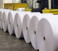 Food Grade White PE Coated Kraft Paper Roll 40 gsm