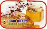GGNL HONEY