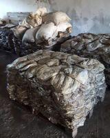 Frozen Omasum , Dry salted omasum ,Frozen Beef Omasum