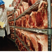 Halal Frozen Beef Offals/Frozen Beef meat