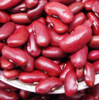 100% Speckled Kidney Beans | Red Beans